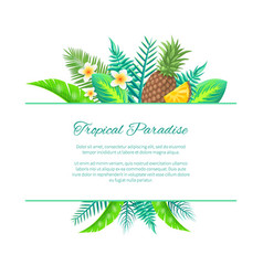 tropical paradise summer leaves and fruits vector image