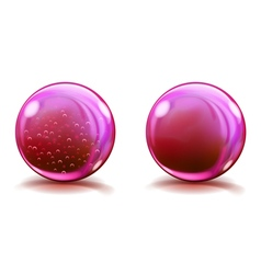 Two big pink glass spheres vector