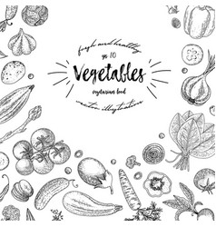 vegetables top view frame ink hand drawn vector image