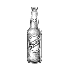 Beer bottle isolated vector image vector image