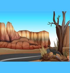 empty road in the western desert vector image