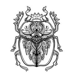 scarabaeus sacer dung beetle sacred symbol in vector image