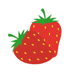 strawberries fruits fresh harvest in flat style vector image