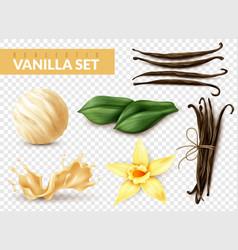 Vanilla set realistic transparent vector