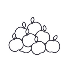 apples line icon sign on vector image