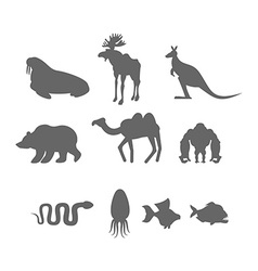 Set Wild animal silhouette Animals from Zoo and vector image vector image