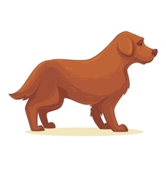 cartoon dog isolated vector image