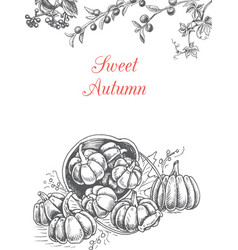 greeting card with sweet autumn vector image