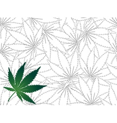 Seamless Cannabis leaf background vector image