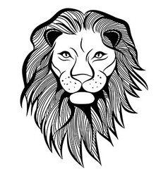 Lion head animal vector image vector image