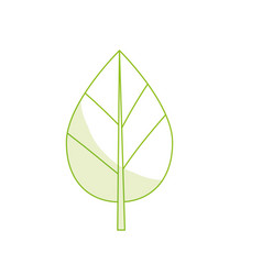 Silhouette natural leaf botany of tropical plant vector