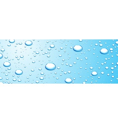 Banner with water drops vector image
