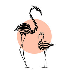 Abstract silhouettes pink flamingo vector