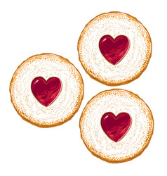 biscuits with icing sugar and strawberry jam on vector image