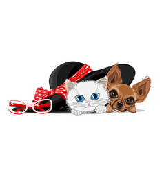 Cat and dog in the hat vector