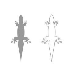 Lizard set icon vector