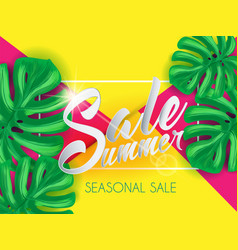 Summer sale on papper background witn palm leaves vector