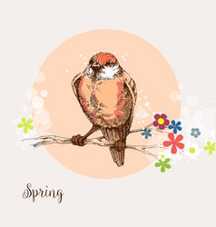 bird in a blooming tree greeting card spring vector image