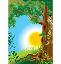 old oak illustration vector image
