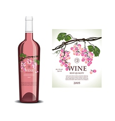Conceptual transparent label for rose wine vector image