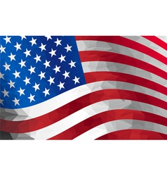 flag US vector image vector image