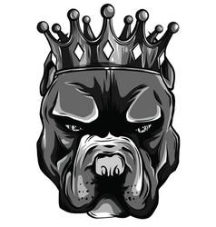 A pit bull dog head vector
