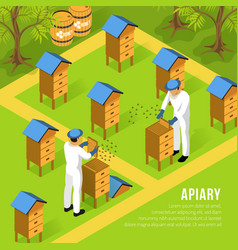 beekeepers at apiary isometric vector image