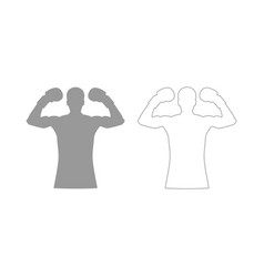 Boxer set icon vector