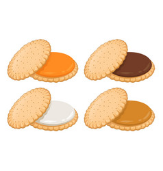 cookie cream sandwich with various flavour vector image
