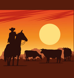 Cowboy in horse and cows in desert sunset vector