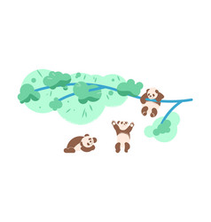 cute baby panda bears climbing tree and playing vector image
