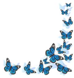 Element design frame made butterflies blue vector