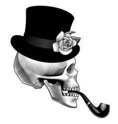 human skull half face with smoking pipe and black vector image