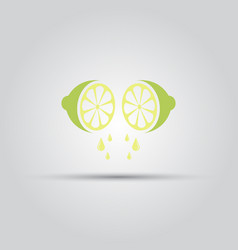 lime sliced and drop of juice isolated icon vector image