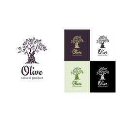 olive tree logo design template for oil vector image