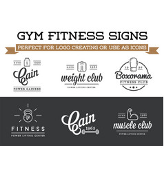 Set of fitness aerobics gym elements and logotype vector