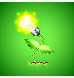 Plant-bulb grows from the ground background vector image