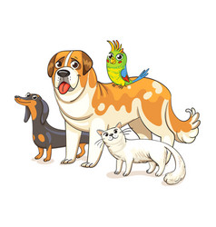 dogs a cat and a parrot standing together vector image