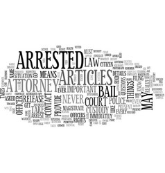 what to do if you are arrested text word cloud vector image vector image