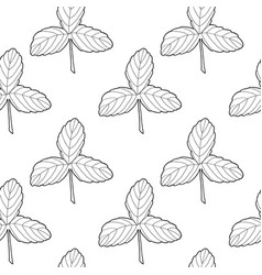 black on white strawberry leaves vector image
