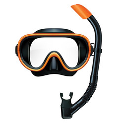 Dive mask and snorkel for professionals vector
