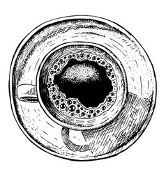 hand drawn coffee cup sketch vector image