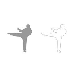 Karate man set icon vector