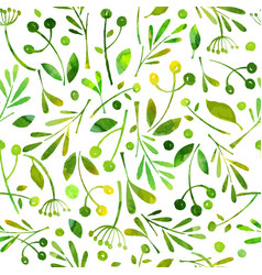 seamless pattern watercolor green herbals vector image