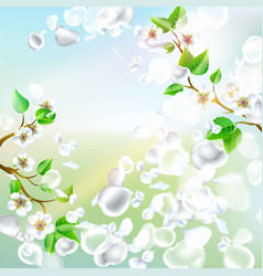 Spring background with falling petals vector