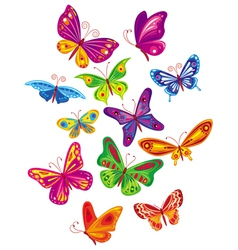 colorful butterfly set vector image vector image