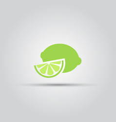 a slice of green lime isolated colored icon vector image