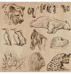 Animals around the World part 21 Hand drawn pack vector