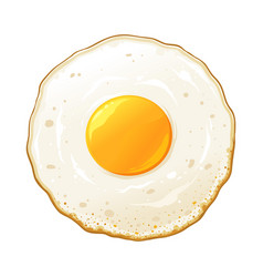 fried egg hand drawn vector image