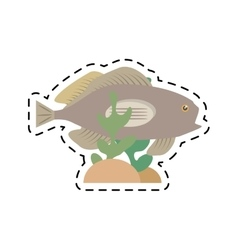 Grouper fish side view sea life coral vector